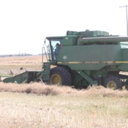 The Harvest Of Hope crop just North of Moosomin on Highway 8 was taken off Friday September 7, 2018
