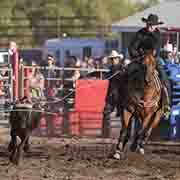 Moose Mountain Pro Rodeo - July 22 & 23, 2017