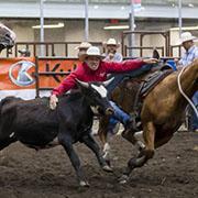 Virden Rodeo - August 17 - 19, 2017