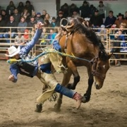 2018 Wapella Rodeo
