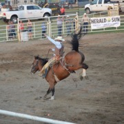The Whitewood/Chacachas Rodeo ran from Aug. 10-12.