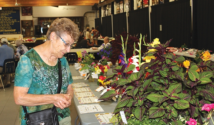 Looking over some of the horticulture displays at last year's Moosomin Horticulture Show.