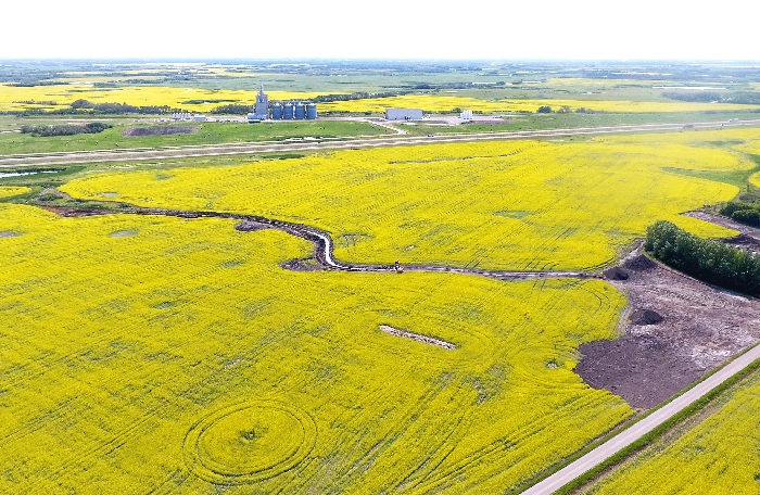This photo by Kevin Weedmark shows canola fields and the Parrish and Heimbecker terminal just west of Moosomin.