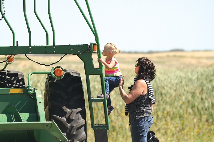 A scene from last year's Harvest of Hope - Nicky Van Deventer and Madison Berbrandt climbing onto a combine