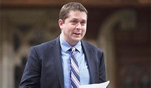 Scheer calls carbon tax plan an election gimmick
