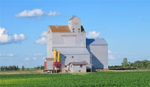 Polls show Conservative support solid in rural Sask., Man.