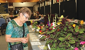Moosomin horticulture show this Saturday
