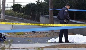 Eight dead, 15 hurt near World Trade Centre Memorial