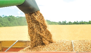 Harvest off to a good start in southeast