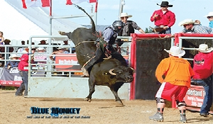 Bobby Stevens rodeo career: From bull riding to raising rodeo bulls