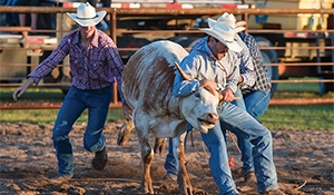 Whitewood/Chacachas Rodeo,  McAuley Hoedown,  Spy Hill Sports Days,  Fleming Jets Reunion - Lots of events set for this weekend