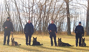 RCMP dogs trained to detect human remains