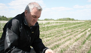 Seed Hawk now Vaderstad: New name, new CEO for company